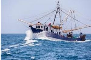 Quand le ventre de la mer  2020-078