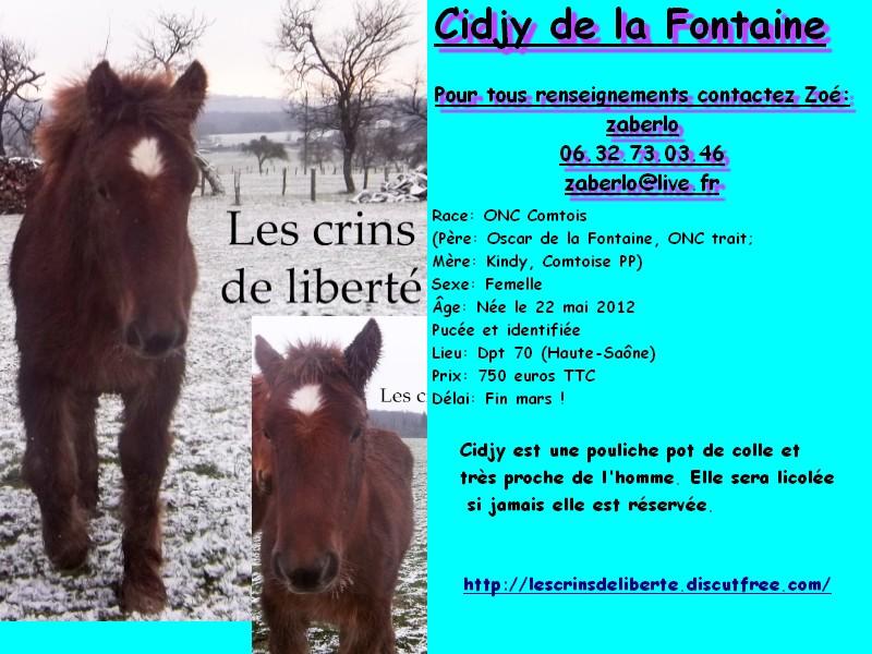 Dpt 70 - Cidjy de la Fontaine - ONC Comtoise - Sauvée par elise-et-delice (Mars 2013) - Page 2 Sans_t21