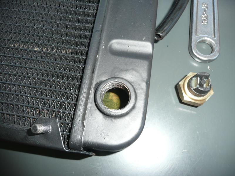 ventilateur - Ventilateur électrique P1070118