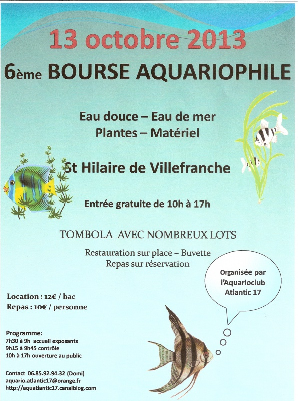 Bourse de St Hilaire 52996010