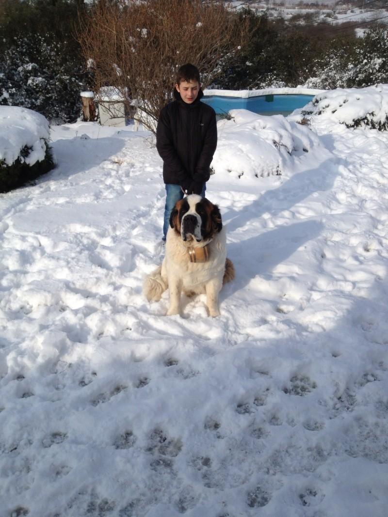 neige dans le var  Photo10