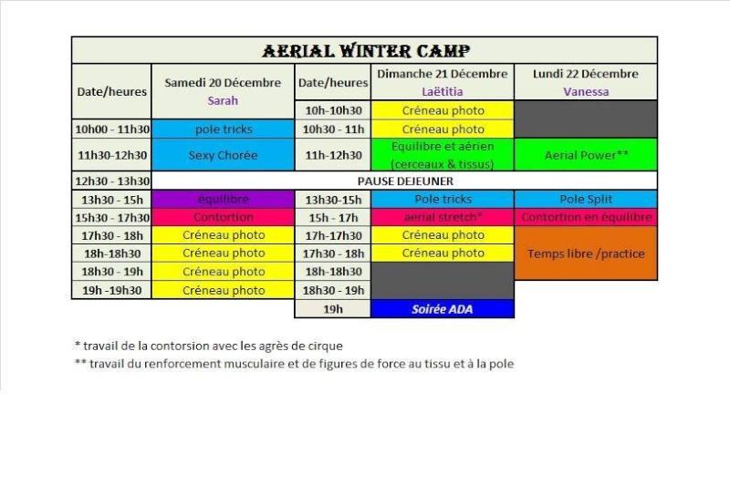 [IDF - ESSONNE] Aerial Winter Camp à l'Aerial Dance Academy - 20-21-22 Décembre 2014. 10703810