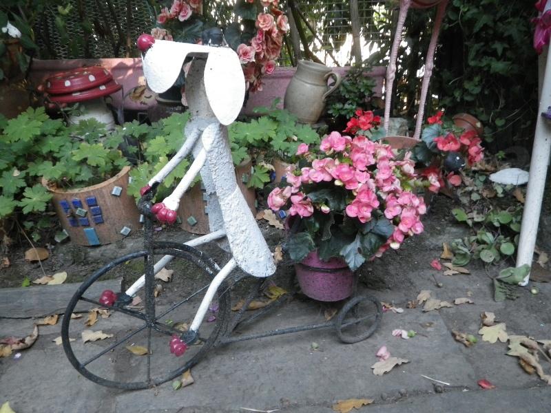 à la gacilly, la venelle fleurie Imgp2417