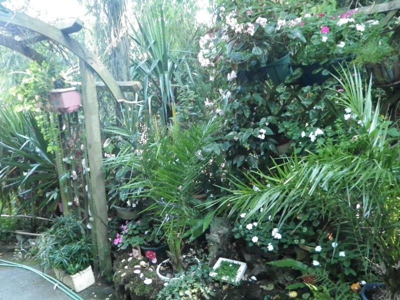 à la gacilly, la venelle fleurie Imgp2426
