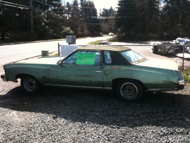 pictures of a 73 Monte I saw for sale March_13