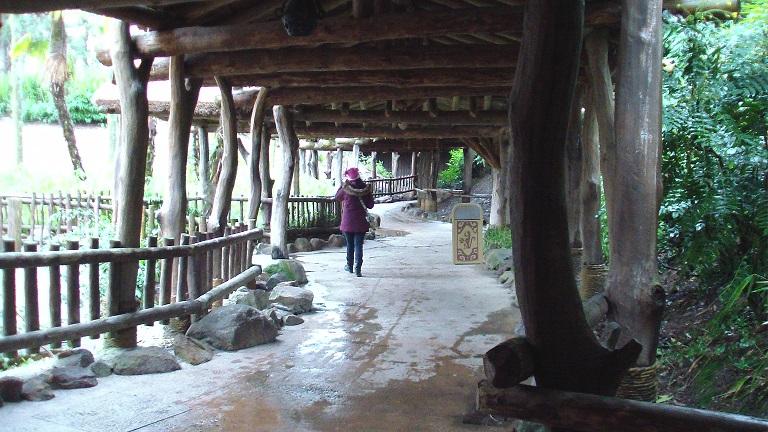 Notre séjour du 4 au 6 février 2013 au Séquoia Lodge - Page 2 Sam_0316