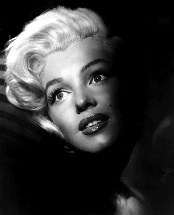 Marilyn Monroe 10132610
