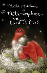 Métamorphose en bord de ciel de Mathias Malzieu Matamo10