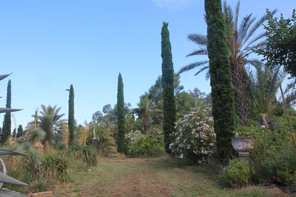 Pierre - Jardin d'acclimatation privé : l'Oasis (66) - Page 30 Allzoe10