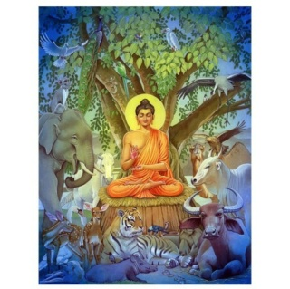 Les voeux de Bodhisattva - Page 13 Animal10