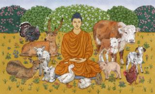 Amitābha: Le Grand Soutra de la Vie Infinie  - Page 2 Lasha-10