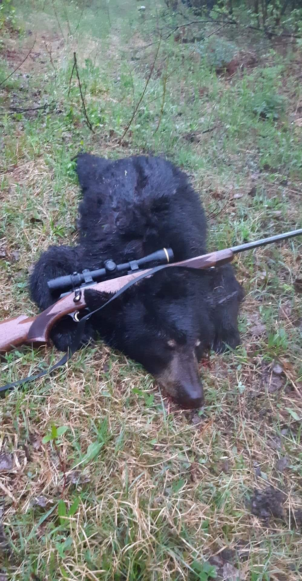 chasse a l'ours 2020 Receiv14