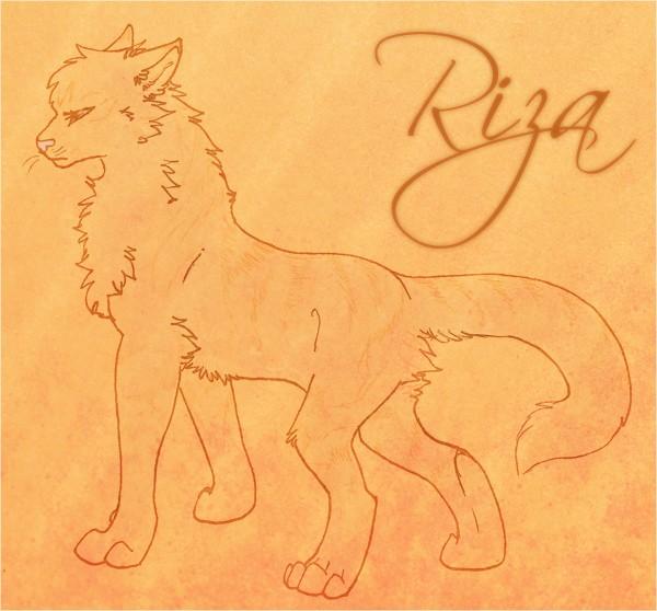 L'atelier d'un p'tit loup {2/2}  - Page 2 Riza1111