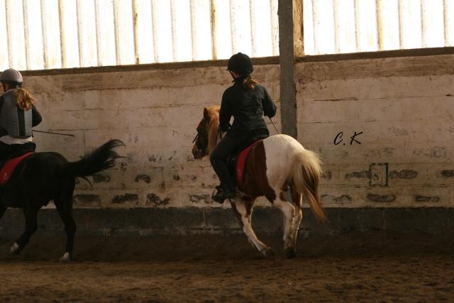 8 ans d'équitation..♥ - Page 4 Img_5611