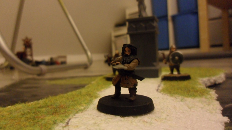 La compagnie de thorin Ecu-de-chène [figurine thehobbit] Sam_1818