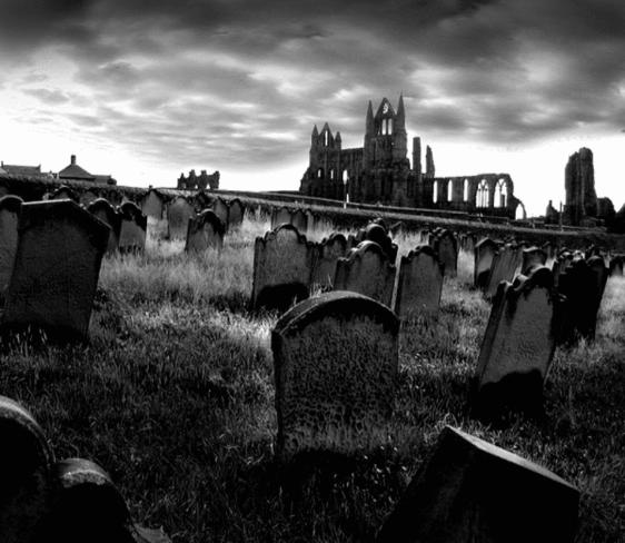 Cemitério - Zona Norte Cemity10