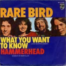 RARE BIRD Downl215