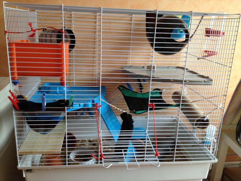 [chambéry] cage fop à vendre C210