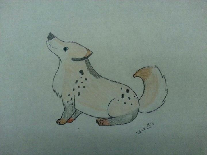 Random Drawings Hefifi11