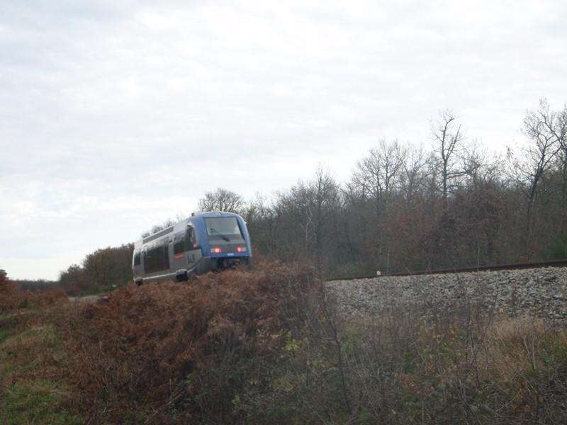 Photos 2012 : Ligne de Toulouse à Auch Bouc_t10
