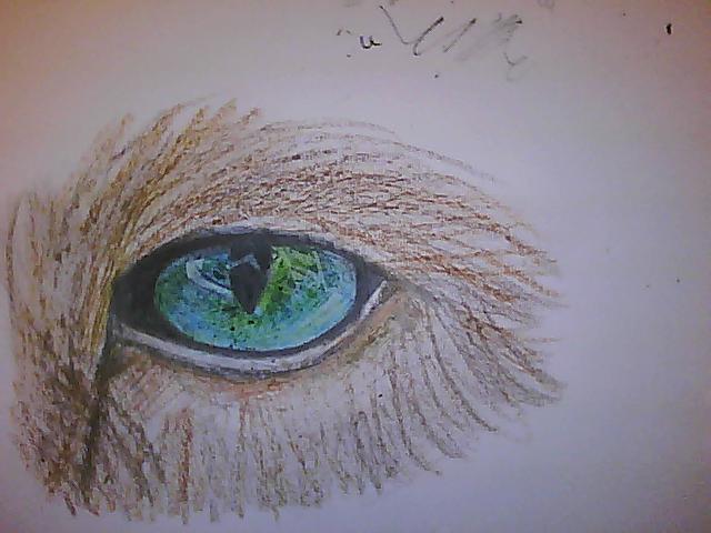 Mes dessins, repro et autres... Pictur12