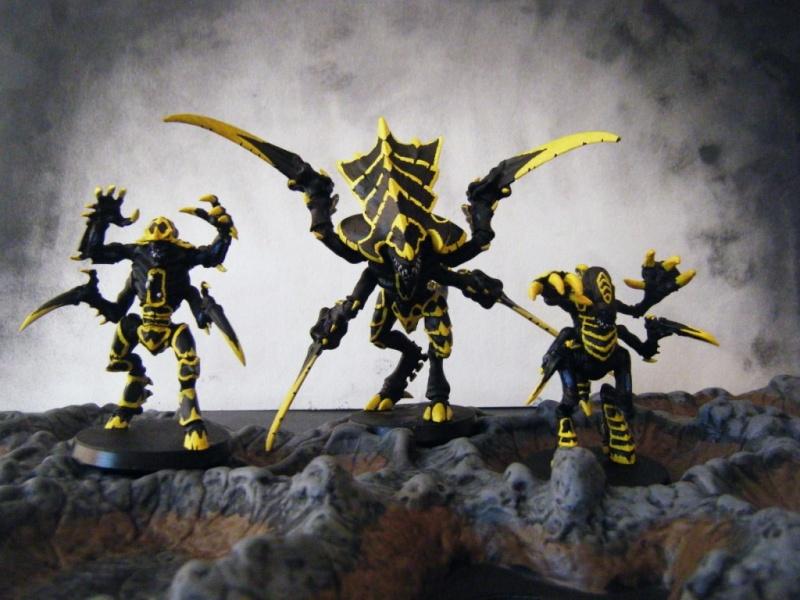 Flotte-ruche WASP Dscf6413