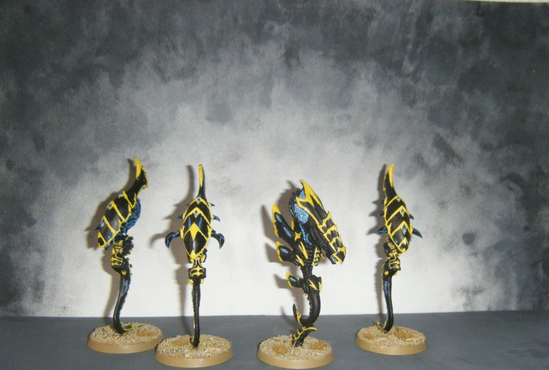Flotte-ruche WASP Dscf8017