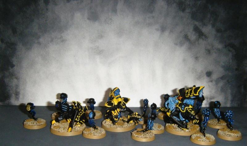 Flotte-ruche WASP Dscf8022