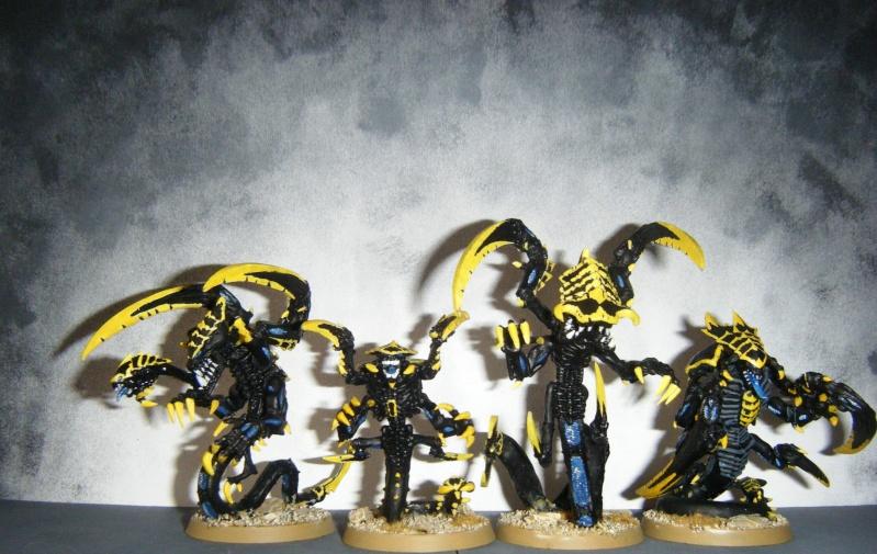 Flotte-ruche WASP Dscf8126