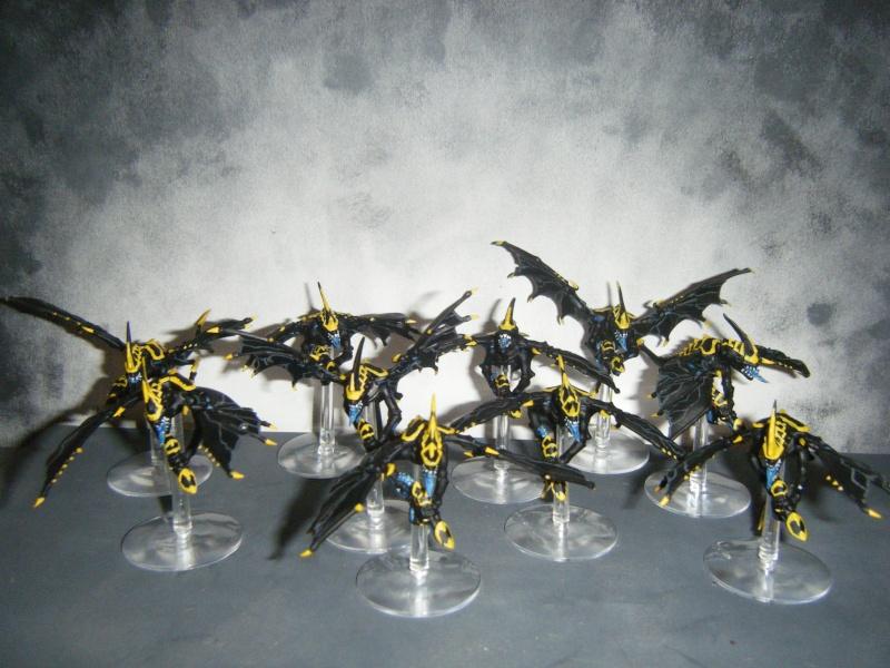 Flotte-ruche WASP Dscf8128