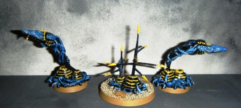 Flotte-ruche WASP Dscf8155