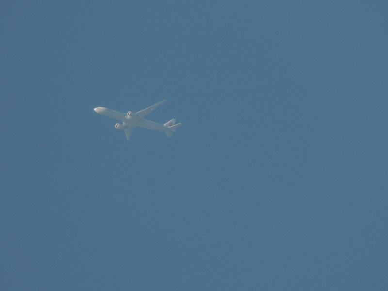 Spotting à haute altitude by pereraph B2031-10
