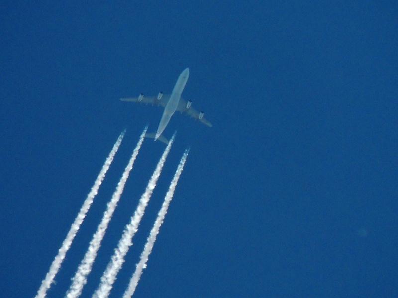 Spotting à haute altitude by pereraph Cccqa211