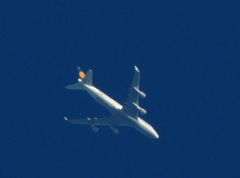 Spotting à haute altitude by pereraph Dabvs211