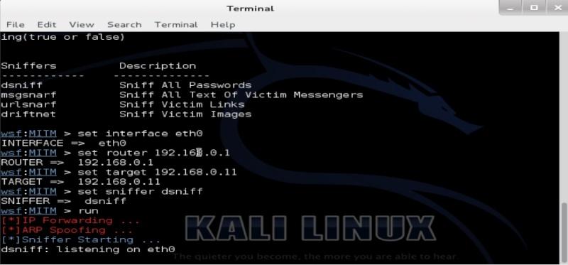 Tutorial websploit para Kali Linux captura de contraseñas Dsniff10