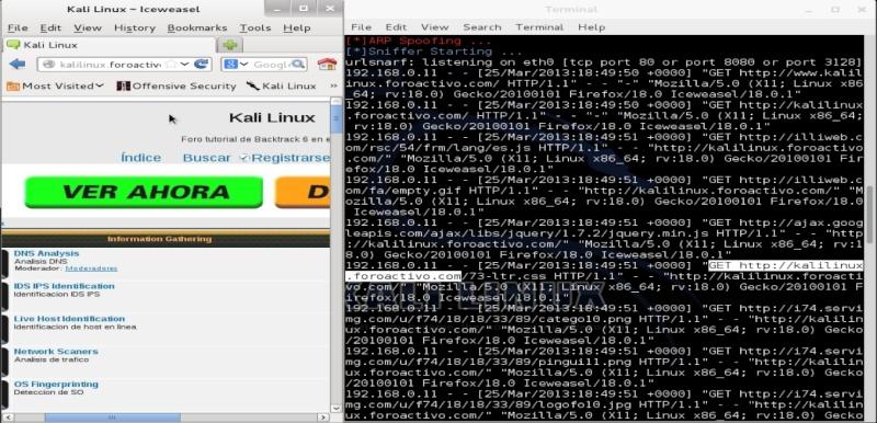 Tutorial websploit para Kali Linux captura de url´s Termin11