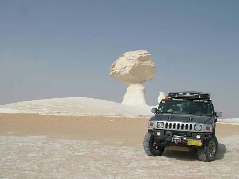 J'adore l'Afrique et ses déserts je souhaite beaucoup apprendre de vous. Dscf5515