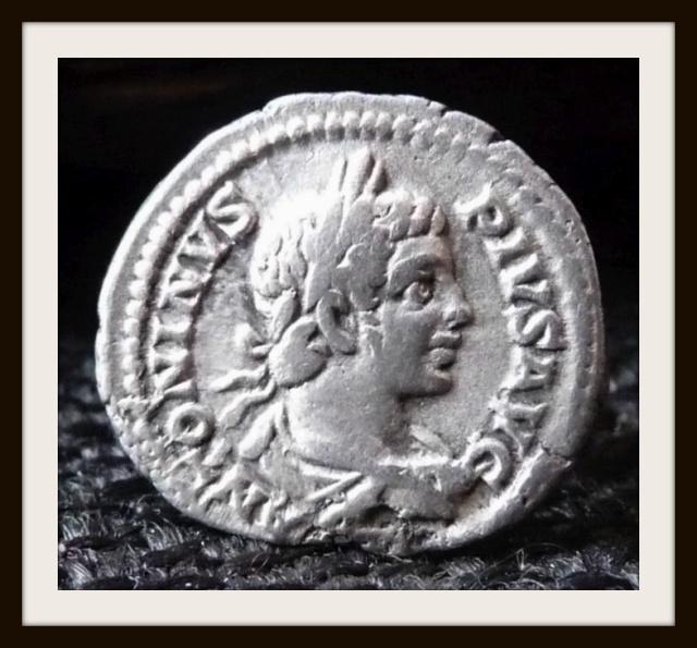 As de Vespasien ..  et avis photos par extension ...  P1100811