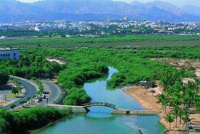 افتتاح عمان صورة تاريخية لحضارة متكاملة على مر العصور  13692_10