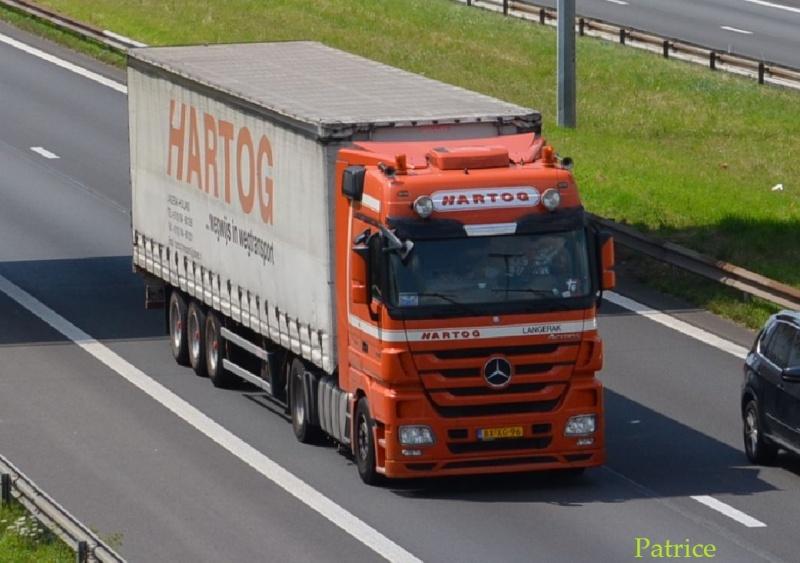 Hartog (Langerak) 11pp12
