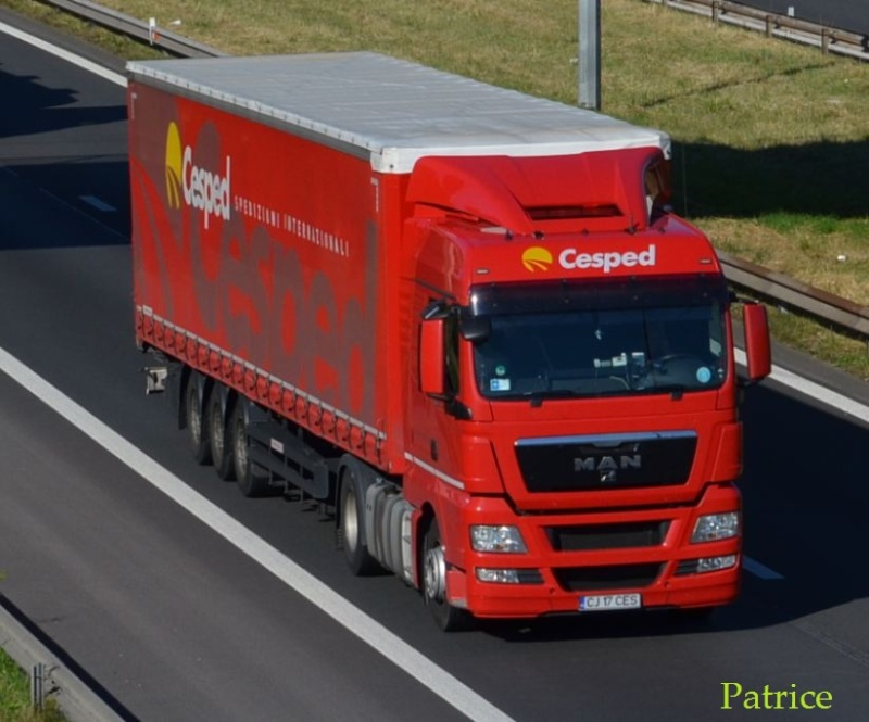 Cesped  (Lauzacco) 154pp12