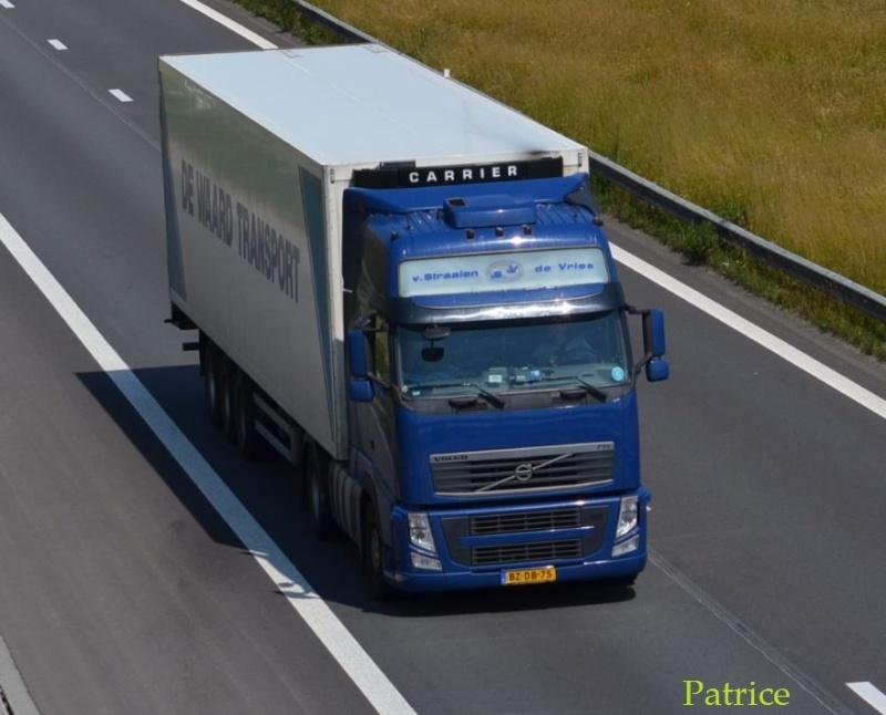 VSDV  Van Straalen De Vries (Zwaagdijk) 212pp10