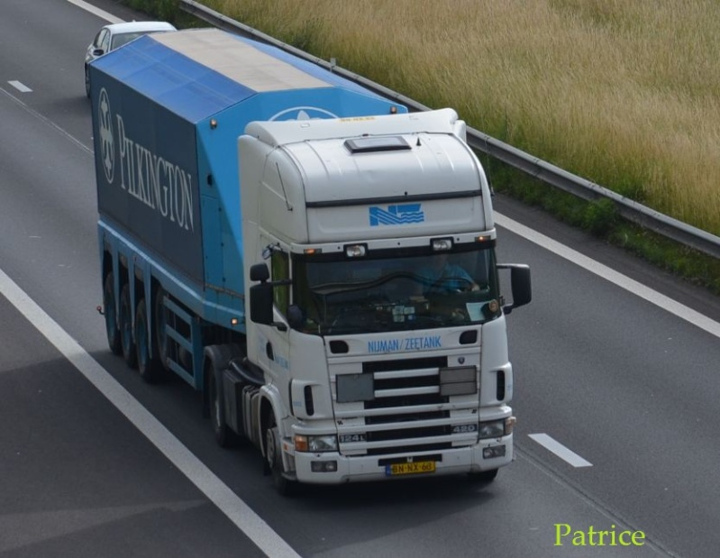 Nijman/Zeetank (Spijkenisse) 254pp10