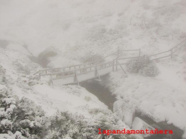 20141105 - GUADARRAMA - PRIMERA NEVADA EN EL PEÑALARA 02510