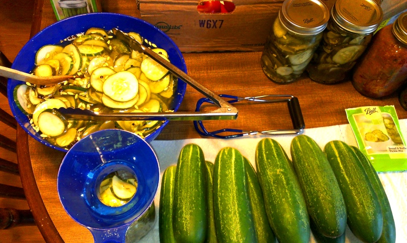 Canned 4 Qts of Bread & Butter Pickles Imag1512