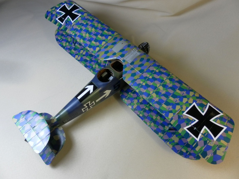 HANNOVER CL.II wingnut wings 1/32 Sam_2114