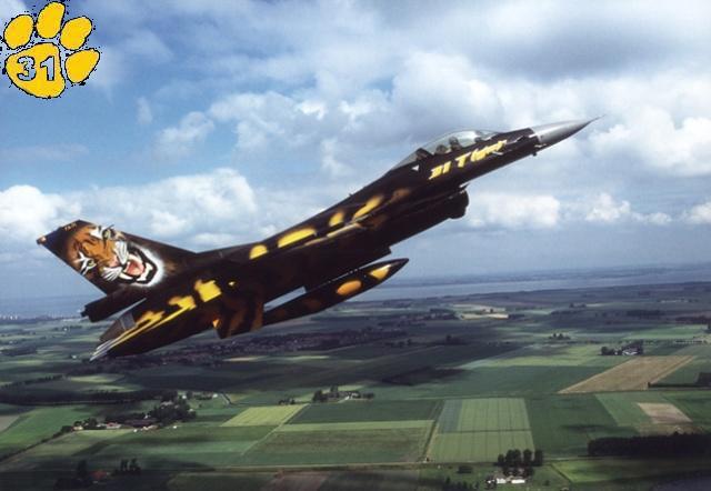 f-16A - force aérienne belge - tiger meet 1998 - ( kit revell 1/72 + decals eagle strike ) Ntm98-12