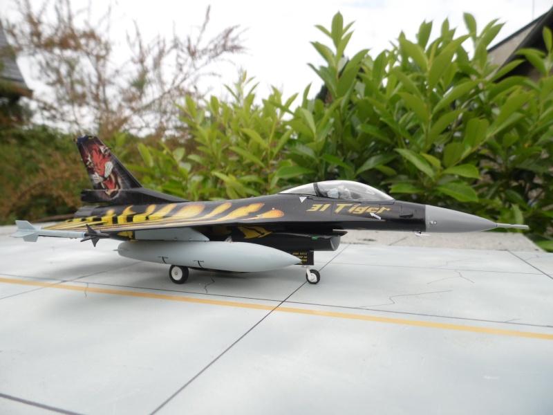 f-16A - force aérienne belge - tiger meet 1998 - ( kit revell 1/72 + decals eagle strike ) Sam_0116