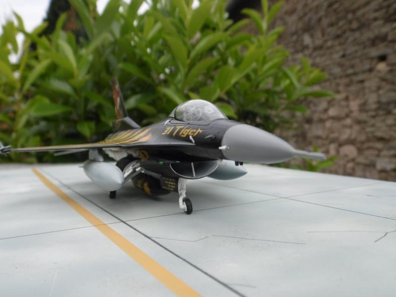 f-16A - force aérienne belge - tiger meet 1998 - ( kit revell 1/72 + decals eagle strike ) Sam_0117