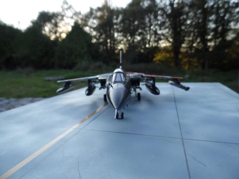 panavia tornado IDS - force aérienne allemande - tiger meet 2011 (kit revell 1/72) Sam_0315